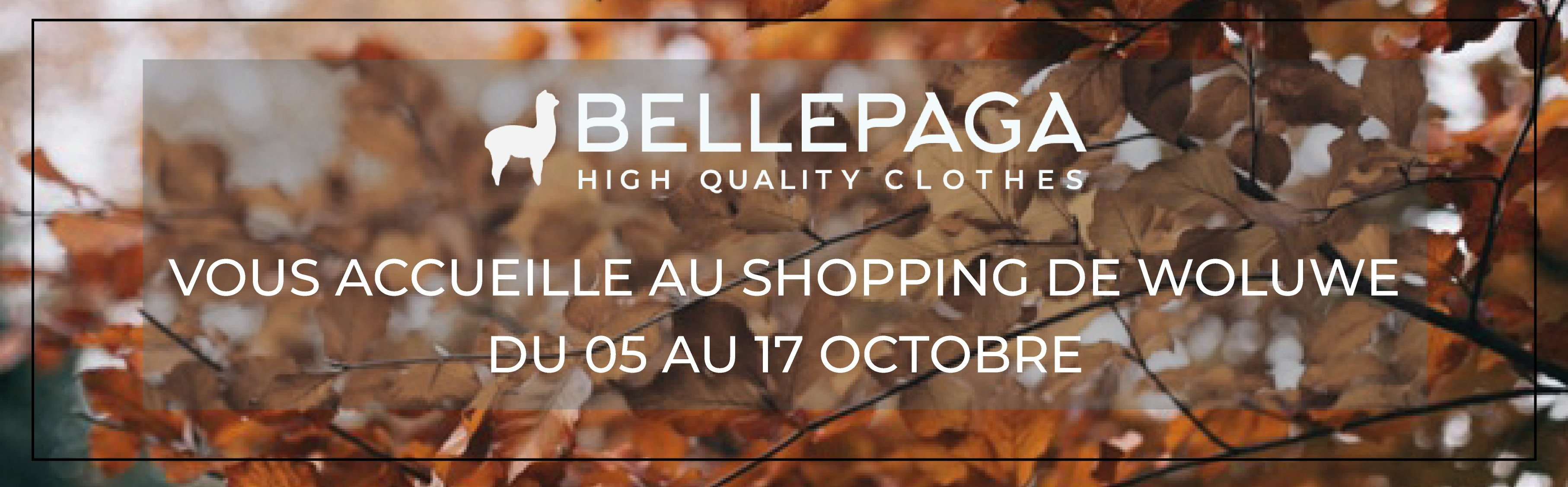 Shopping Woluwe