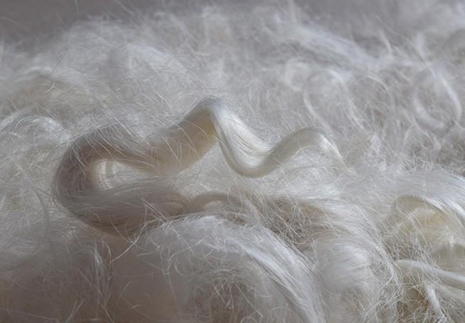 Alpaca fibre - 2
