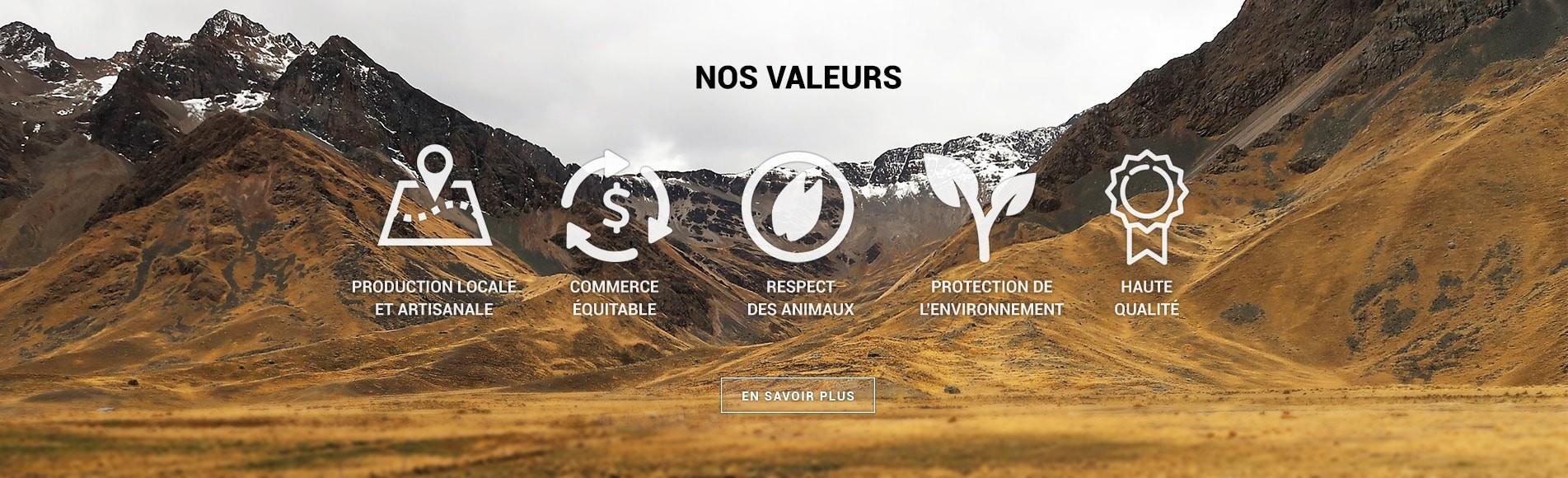 Découvre nos valeurs